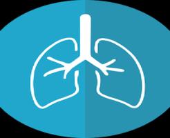 スピリチュアル 病気 意味 肺