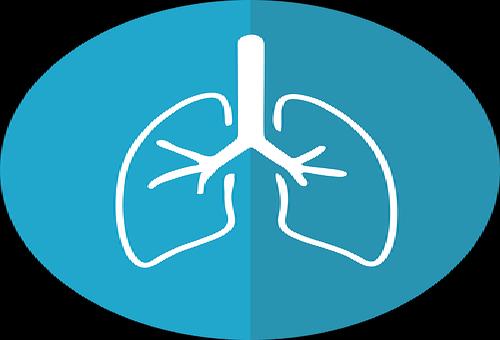 スピリチュアル病気意味肺