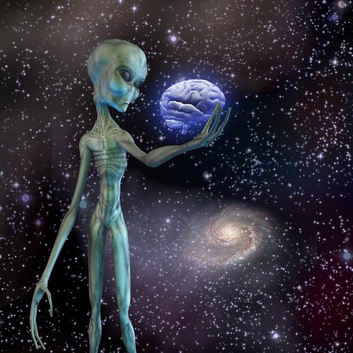 スピリチュアル 宇宙人 特徴