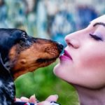 ペットと飼い主との関係性。スピリチュアルな意味合いとは!?
