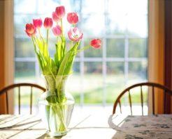 植物 枯れる スピリチュアル