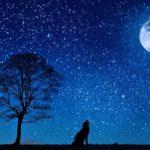 夜型の人の特徴とは!?スピリチュアルの完成が高い人がなりやすい?